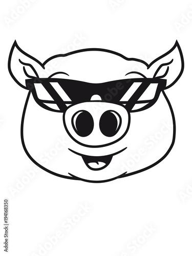 Cool Sonnenbrille Schwein Gesicht Kopf S Niedlich Comic Cartoon