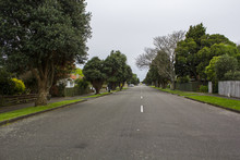 Empty Straigh Road With Trees Surrounding