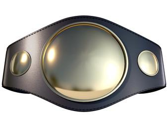 3D Championship  Belt