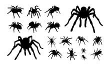 Set Of Various Tarantula Silho...