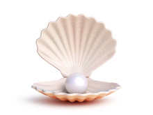 Pearl Inside Seashell Isolated...