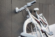 Bicycle Covered With Snow. Win...