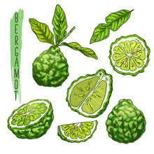 Fruit Of Bergamot Orange Or Kaffir Lime