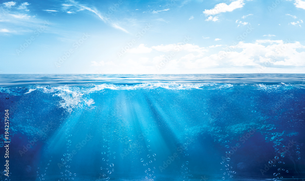 Fototapety, obrazy: UNDER WATER