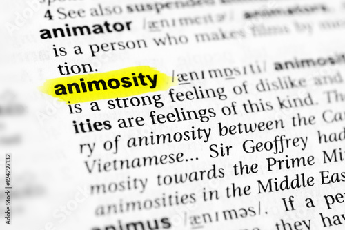 Highlighted English word animosity and its definition in the dictionary Wallpaper Mural