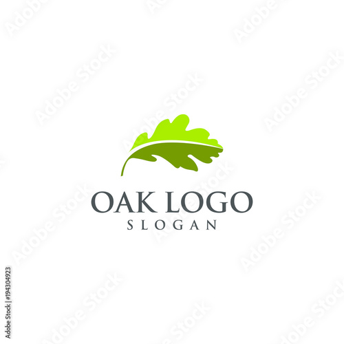 oak vector graphic abstract logo template download Canvas Print