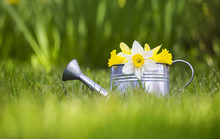 Easter And Gardening Concept -...