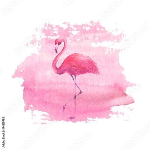 flaming-na-tle-akwarela-rozowy-miejscu
