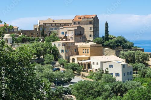 Foto auf AluDibond Olivgrun Bergdorf Pigna auf der Insel Korsika#