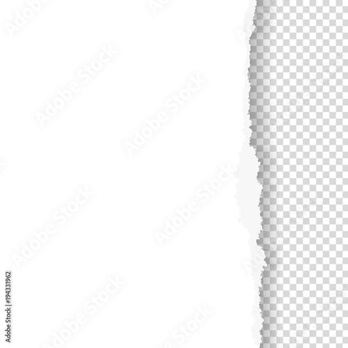 Obraz Torn paper with ripped edge - fototapety do salonu