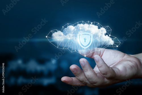 Fotografie, Obraz  Hand shows a data cloud with a protective shield.