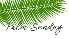 Green Palm Leafs Vector Icon. Vector Illustration For The Christian Holiday Palm Sunday