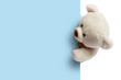 canvas print picture - Teddy bear with blue blank space for commercial graphycs