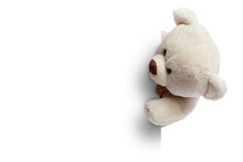 Teddy Bear With White Blank Sp...