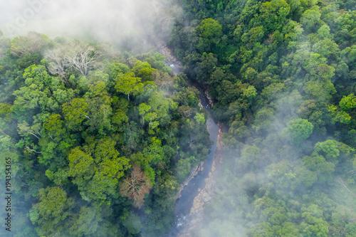 Foto  River valley and Jungle in rural Costa Rica