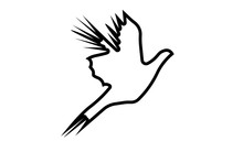 Flying Pheasant Silhouette Outline On White Background