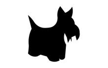 Scottie Dog Silhouette On White Background