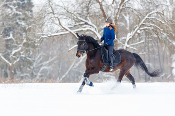 Young rider girl on bay horse galloping in winter. Equestrian winter activity background