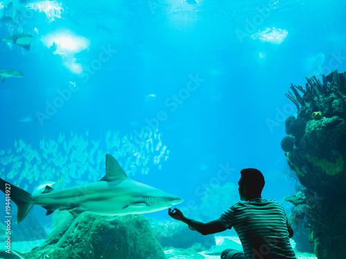 Zdjęcie XXL Mężczyzna ogląda ryba przez szkła w Oceanarium