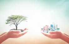 World Habitat Day Concept: Two...