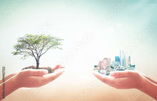 World environment day concept: Two human hands holding big tree and city over blurred nature background