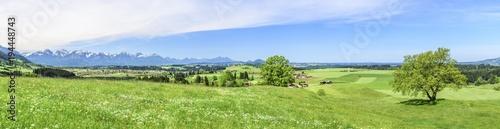 In de dag Pistache frische Frühlingswiesen am Alpenrand nahe Trauchgau