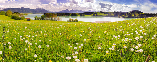 panoramic scene with lake Forggensee and alps mountains in region Allgäu, Bavaria, at spring