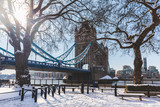Fototapeta Londyn - Tower bridge and trees in London with snow