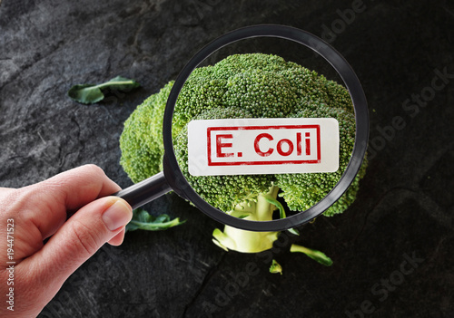 E Coli contamination