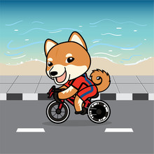 Cute Cartoon Character Design Shiba Inu Dog Action Ridding A Bicycle On Street , Beach Background