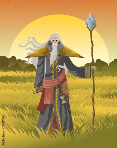 old wise magician with staff Canvas Print