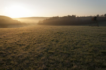 Sunset Over Spring Grassy Mead...