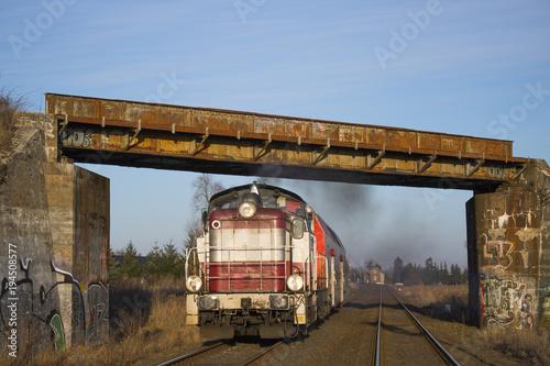 Spalinowóz z pociągiem przejeżdża pod wiaduktem kolejowym Poster