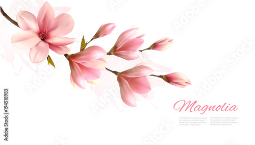 Foto op Plexiglas Magnolia Nature background with blossom branch of pink magnolia. Vector