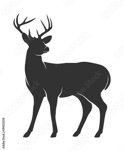 Naklejka premium Sylwetka jelenia z rogami na białym tle