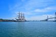 帆船が停泊する港の風景