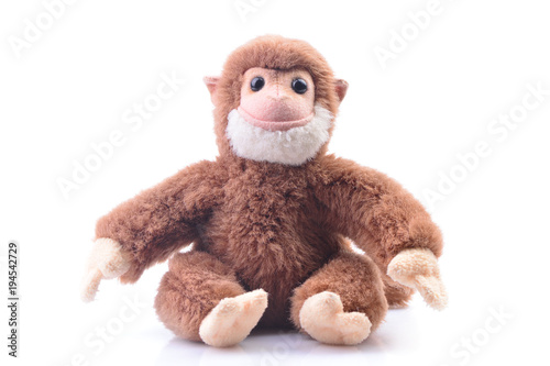 Monkey on a white background Canvas Print