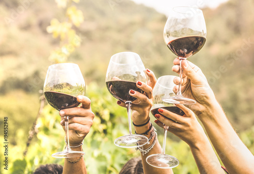 Cuadros en Lienzo Hands toasting red wine glass and friends having fun cheering at winetasting exp