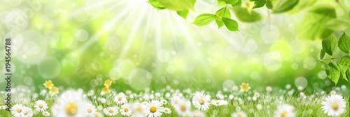 Poster Spring Frühling 427