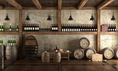 Fotografie, Tablou Old wine cellar with bench for tasting