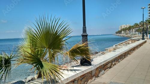 Palmera junto a una farola en un paseo marítimo en el Mar Menor