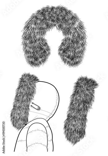 Foto Fur vector design illustration template