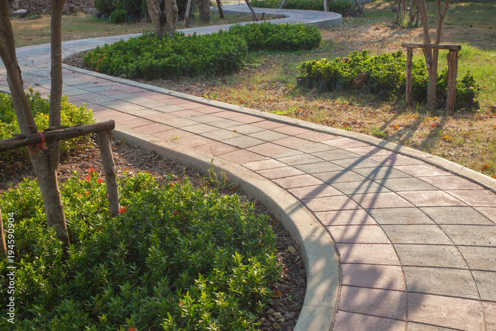 Fototapeta walkway and leaves in the park at thailand