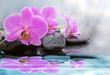 Pink orchid flowers reflected in the water.