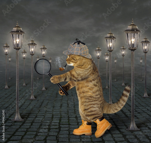 Fotografia  The cat detective with a smoking pipe and a magnifying glass is walking down the street