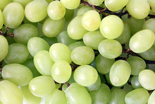 Texture Grape, Bunch Of Fresh Grapes, Fresh Green Grapes. Healthy Fruits Wine Grapes Background, Green Wine Grapes Background In A Supermarket Local Market Bunch Of Grapes Ready To Eat.