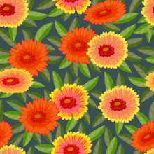 Gaillardia Pulchella (firewheel, Indian Blanket, Indian Blanketflower, Or Sundance)Seamless Pattern. Vector Illustration.