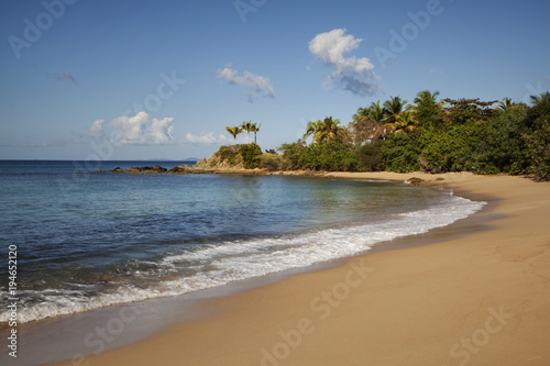 Staande foto Strand Caribbean, Puerto Rico, Vieques. Tranquil beach landscape.