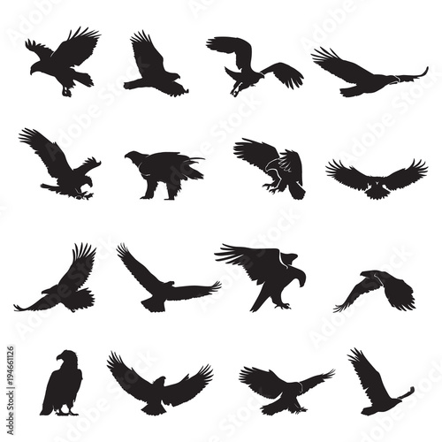 eagle silhouette vector Wallpaper Mural