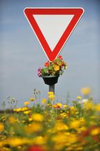 Panneaux Routier Signalisation Stop Colza Fleurs